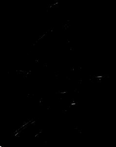 Logo005_Sozialassistent